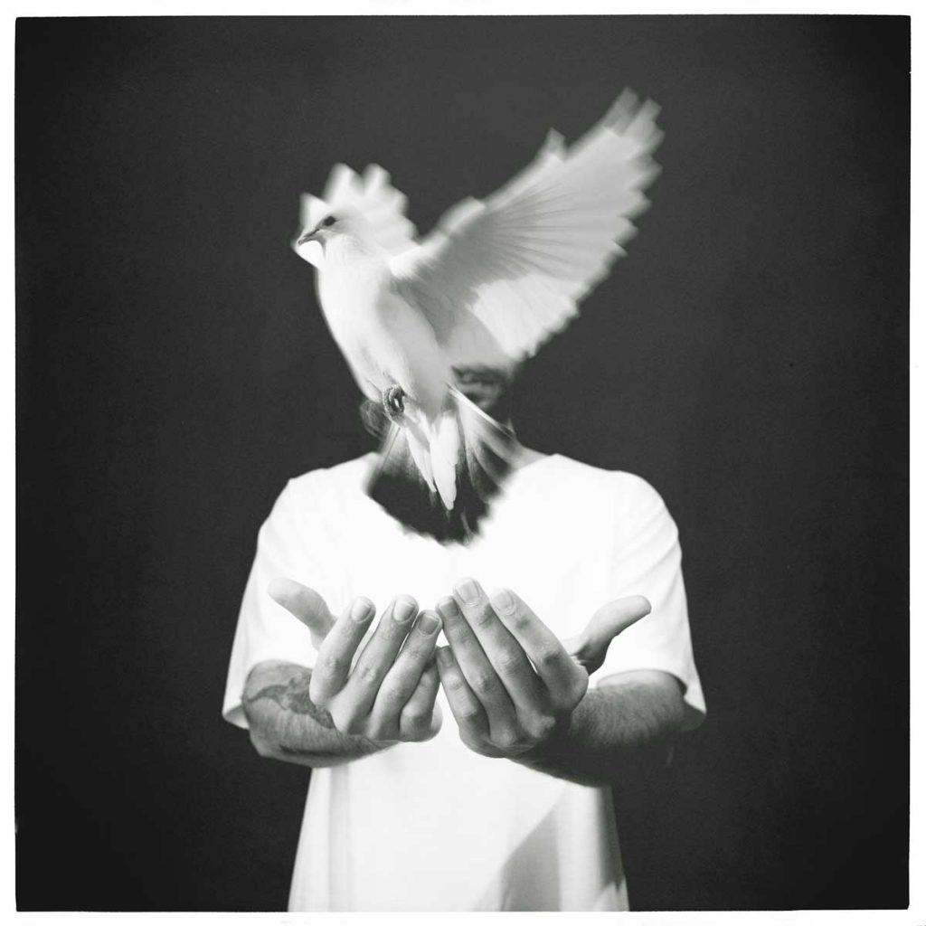 "Danny - ""Bird Set Free""/""Pájaro Liberado"""