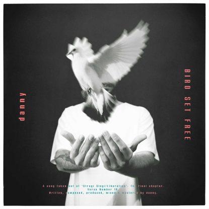 "Danny's ""Bird Set Free"" cover"